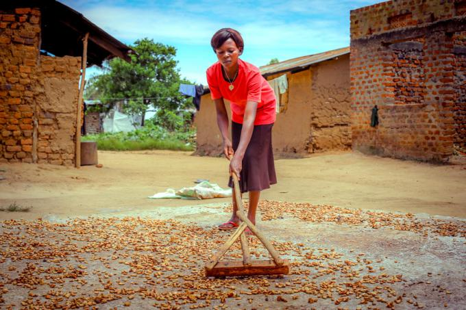 Grace at home separating cocoa beans for sale