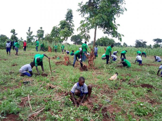 School pupils in Kiryandongo plant trees. Apio Josephine / Save the Children
